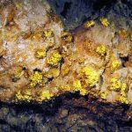 Bên trong mỏ vàng
